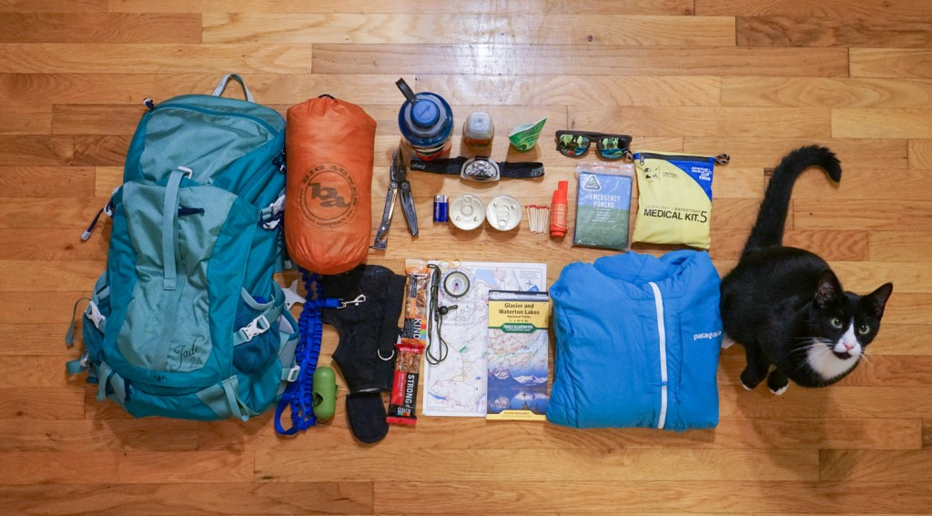 what to pack for hike with cat