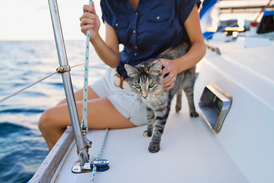 Georgie Boat Cat and Jessica 2