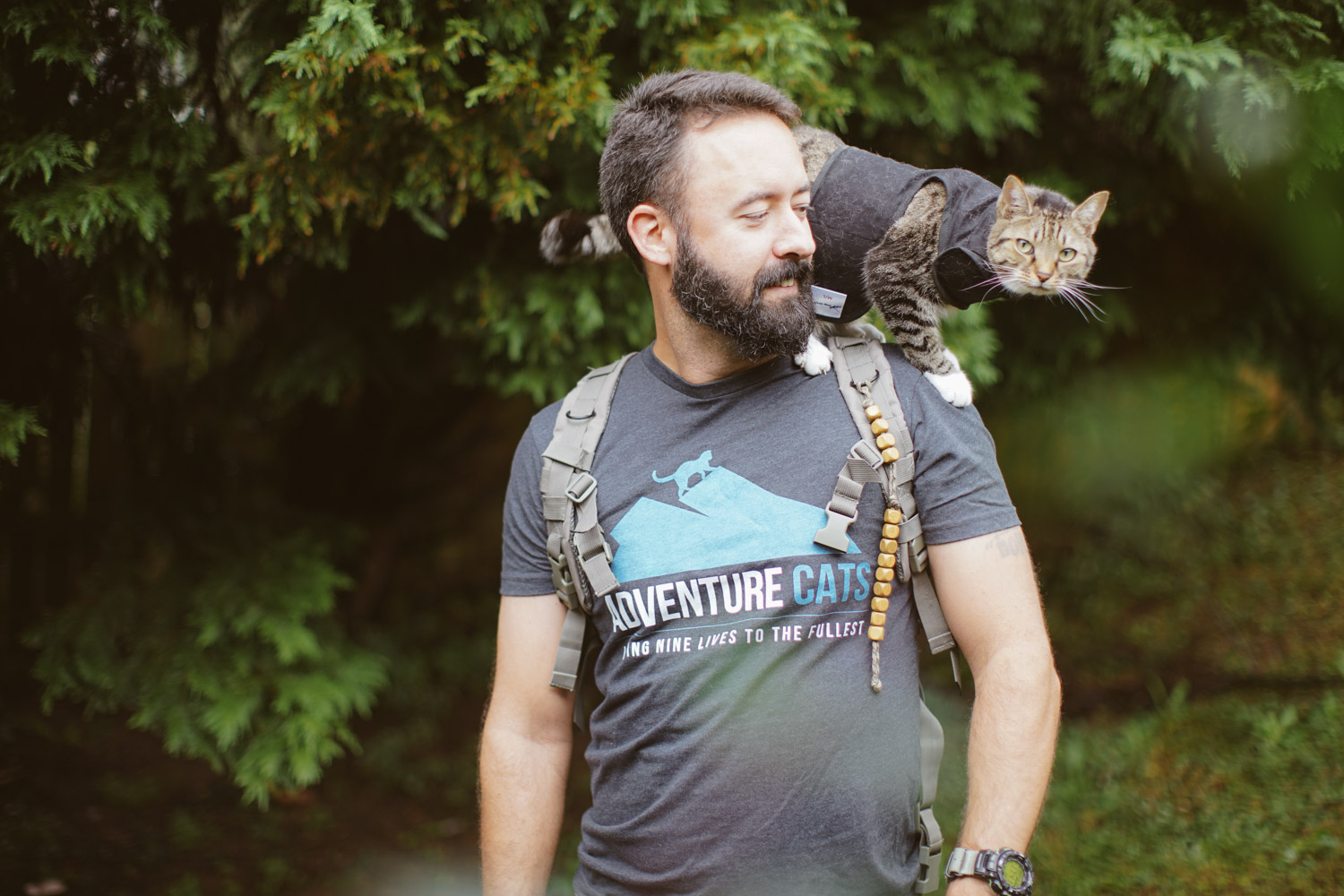 Best Outdoor Gear For Dogs
