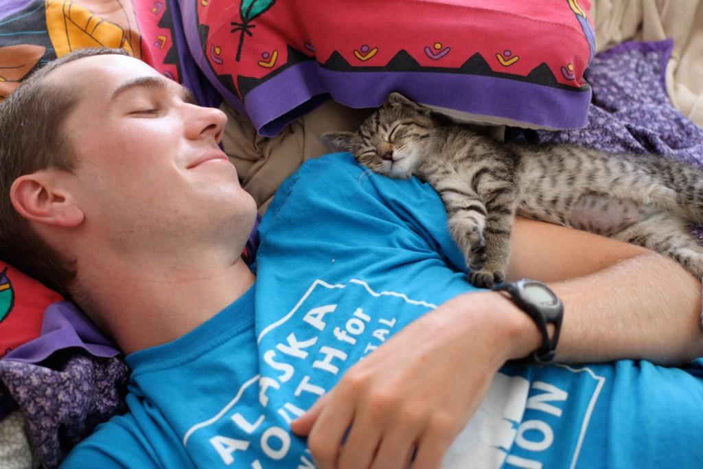 man cuddling with kitten