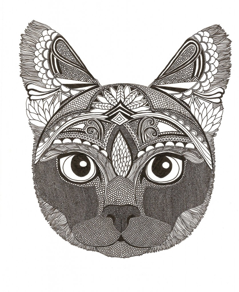 Shade the cat illustration