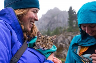 cuddling kittens on a hike