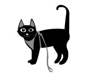 cat in harness illustration