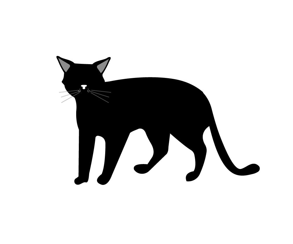 seymour duncan phat cat