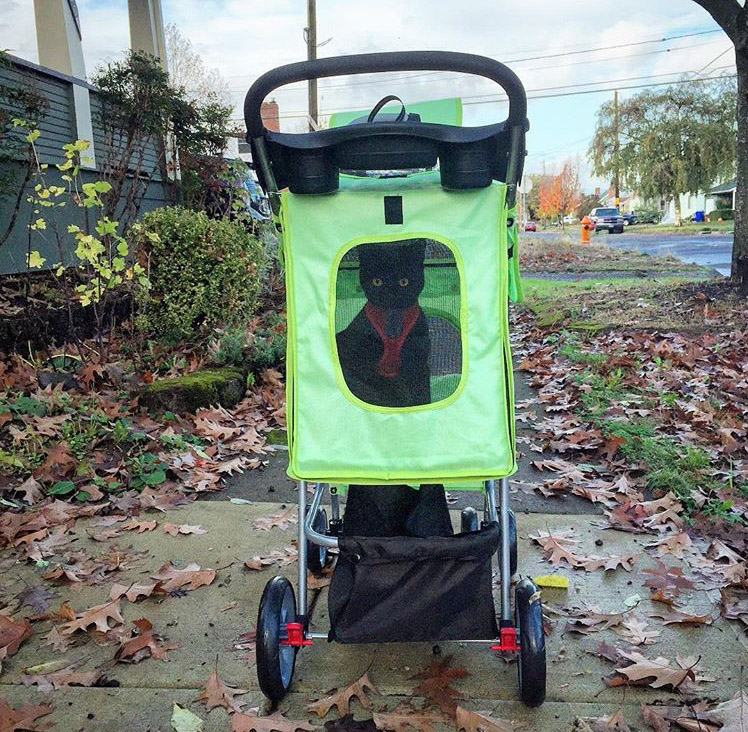 Albie sees the Portland sights from her stroller. (Photo: Melissa Capone)