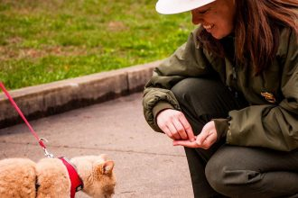 Park Ranger Angela Allison feeding treats to hiking cat at New River Gorge National River