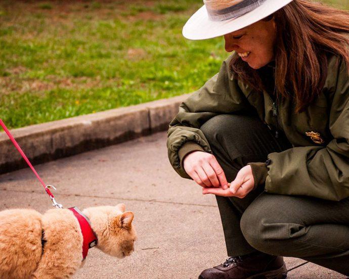 Park Ranger Angela Allison feeding treats to hiking cat at New River Gorge National River