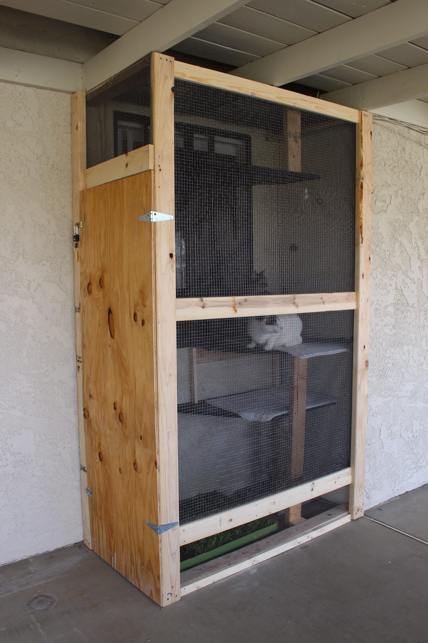 Catio extends from floor to ceiling