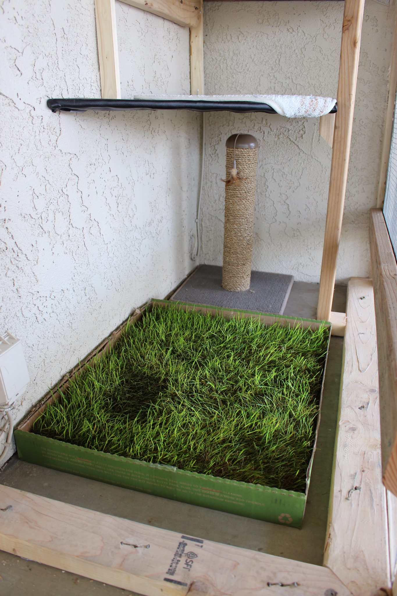 Alicia Haney's cats also have a Disposable DoggieLawn from Fresh Patch, so the catio is the perfect place for them to practice using it instead of a litter box. (Photo: Alicia Haney)