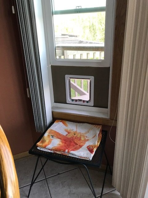 A cat flap purchased from Amazon easily turns this window into a catio entrance. (Photo: Nicole Pulfer)