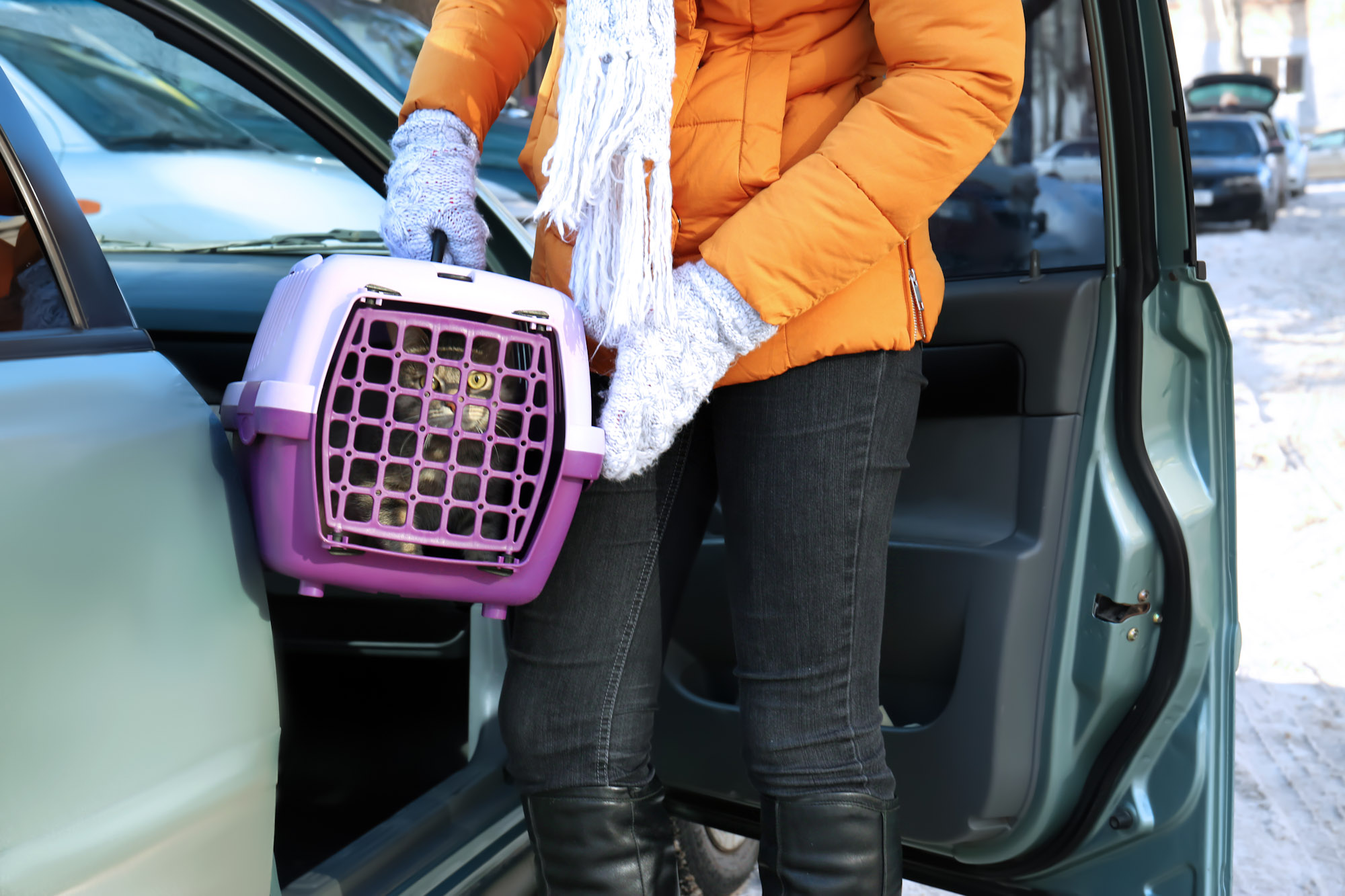 woman putting cat carrier in car