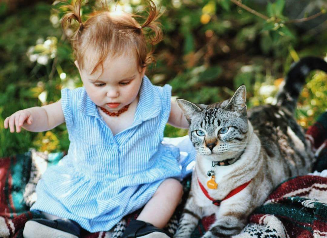 Cat and baby outside