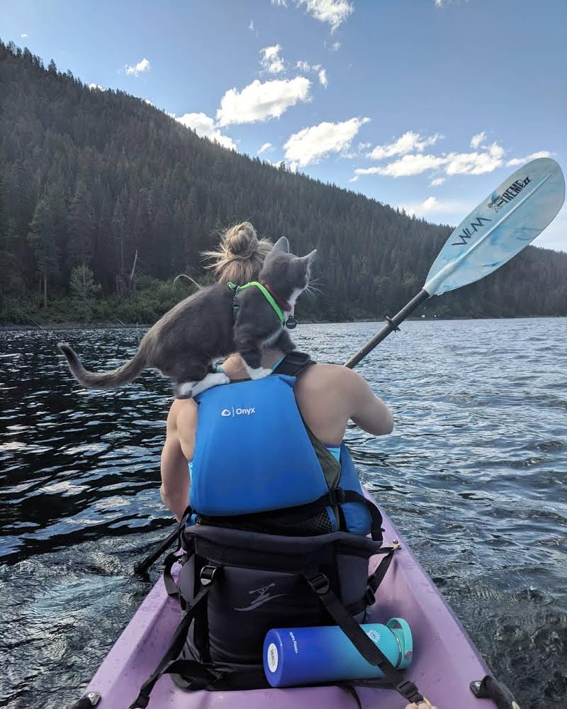 Parsley sits atop owner's shoulders while kayaking