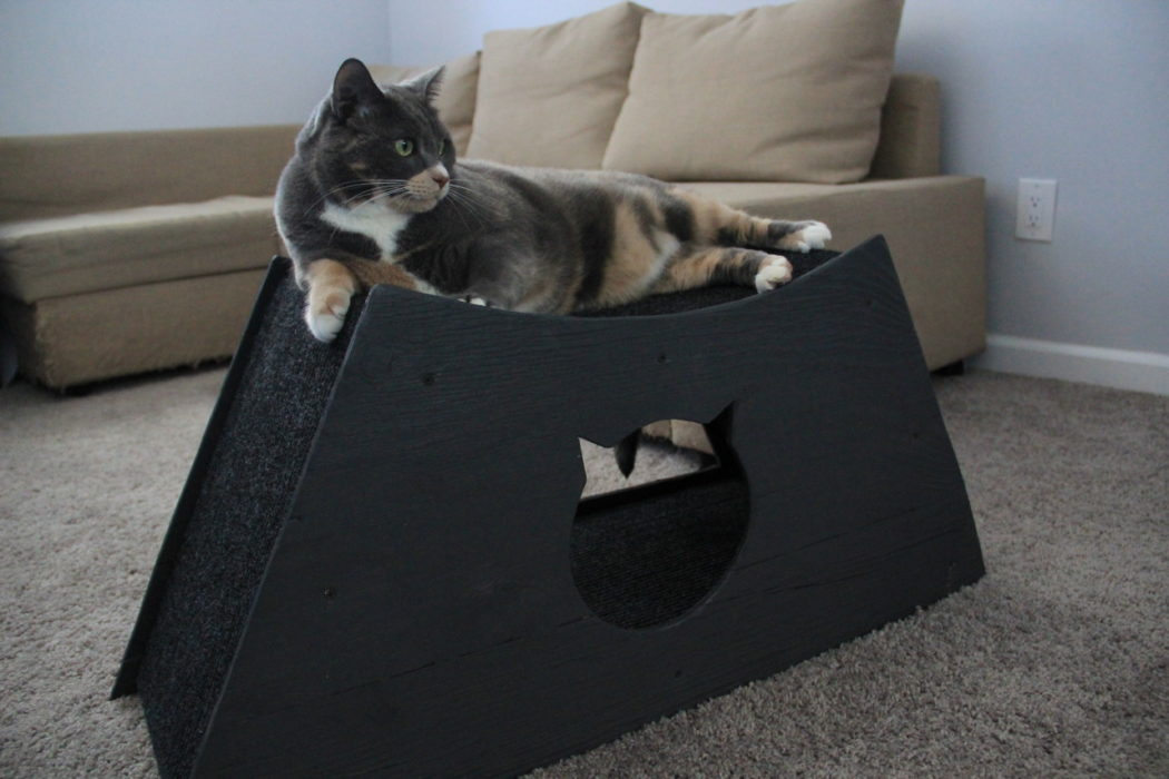 cat lying on top of homemade cat cave