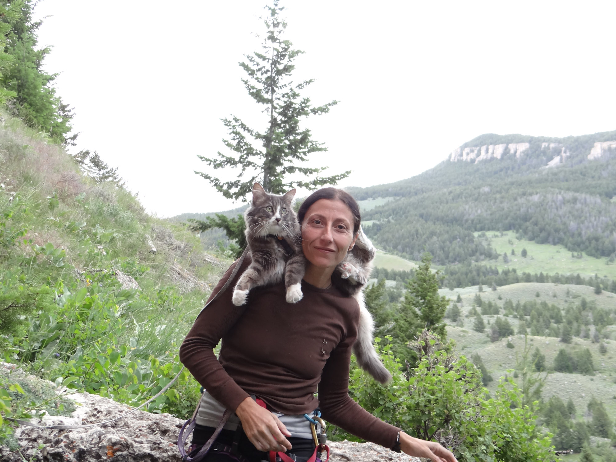 Sandra Samman poses with her courageous crag cat, Denali.