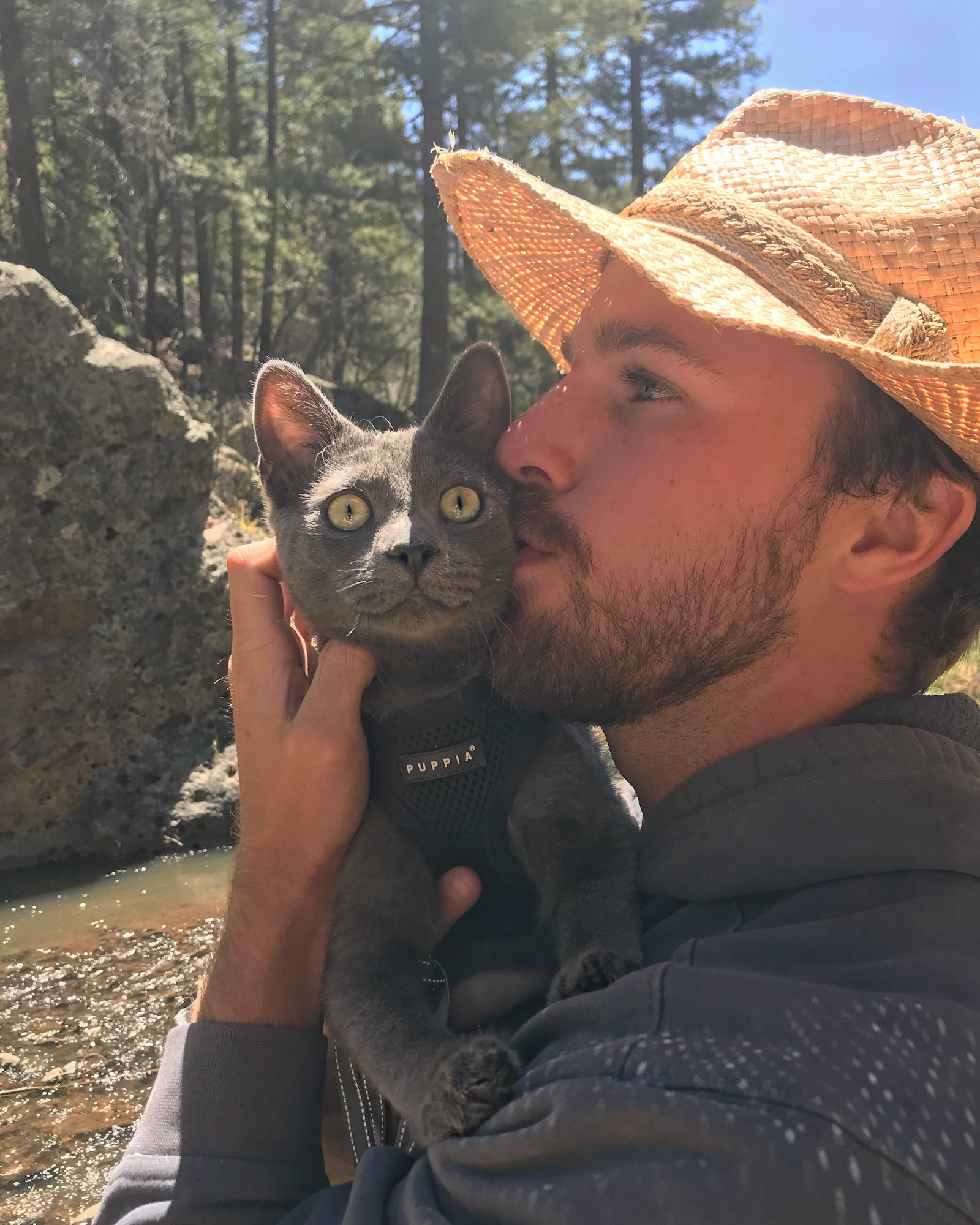 man kisses his gray adventure cat Walt