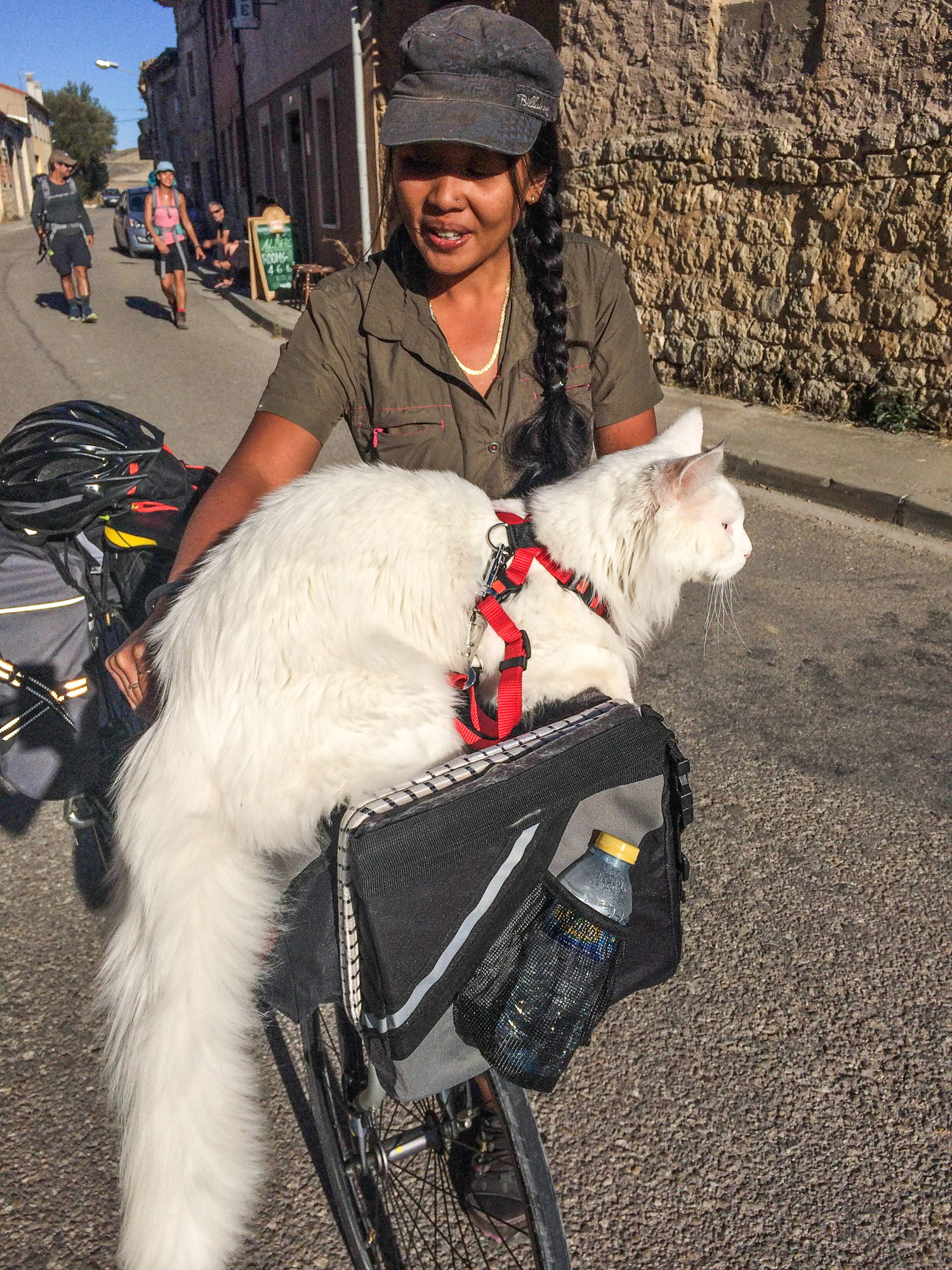 Cezar has taken many bike rides with his owner, Carla. (Photo: Instagram/@cezars.crew)