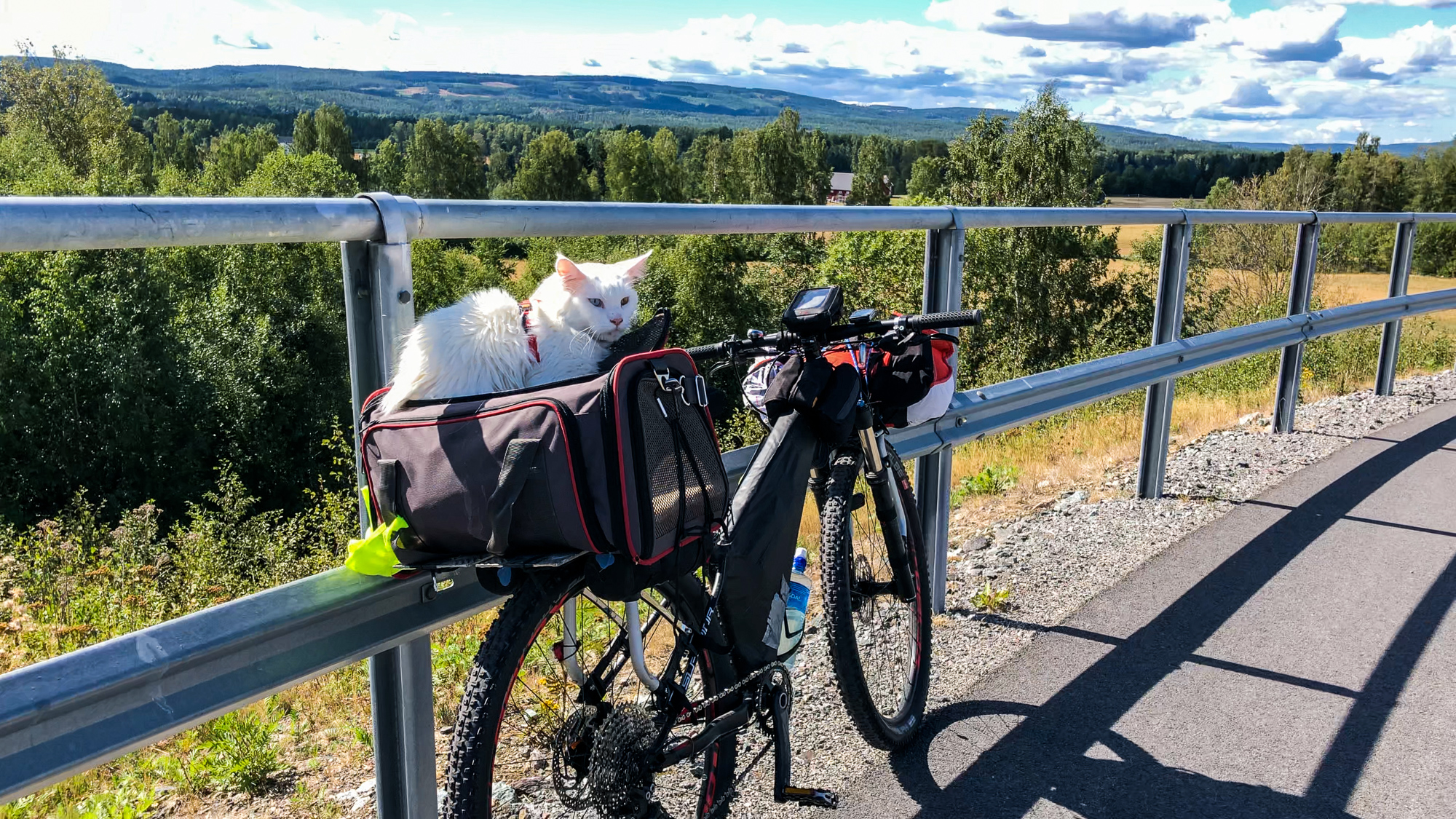 Cezar is no stranger to touring on bikes. Here, he sits comfortably in Norway. (Photo: Instagram/@cezars.crew)