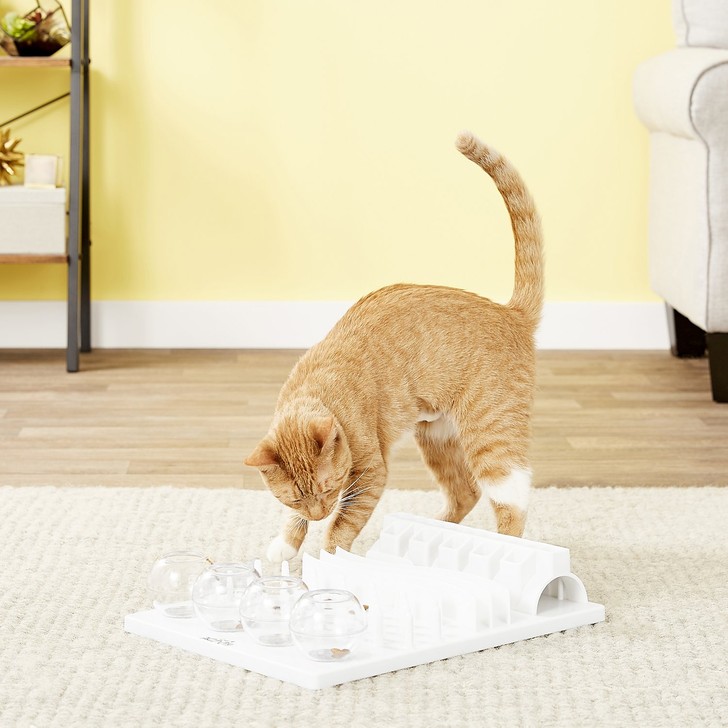 cat playing with Trixie Activity Fun Board